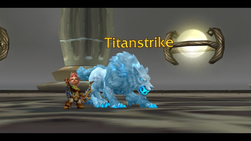 Hunter with Titanstrike & Hati